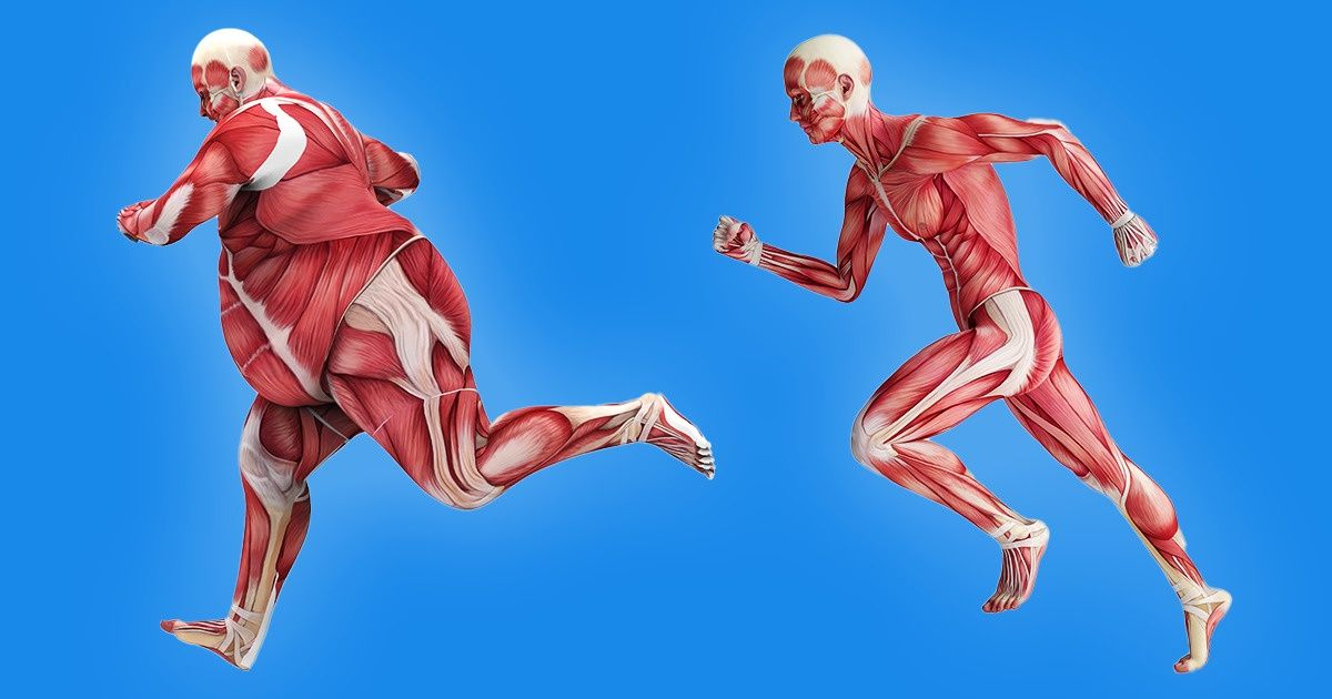 As partes do corpo que ficam em forma dependendo do tipo de esporte realizado