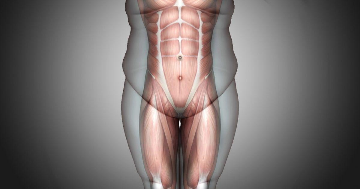 Uma rotina de5minutos mudará seu corpo em30dias