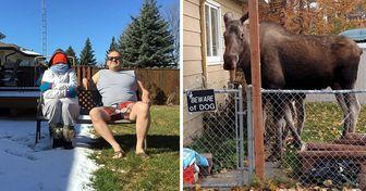 20+ Fotos que comprovam que não existe um lugar como o Canadá