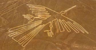 Cientistas revelam o mistério das aves nas linhas de Nazca (elas não são o que se pensava)