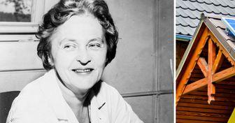 10+ Invenções feitas por mulheres que marcaram o mundo e que fazem parte do nosso dia a dia