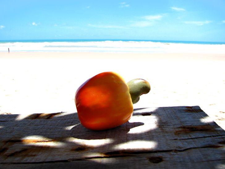 Conheça 8frutas nativas doBrasil eseus benefícios àsaúde