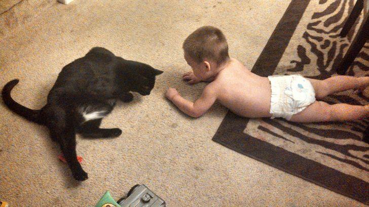 22 Fotos para comprovar que crianças e animais de estimação são os melhores aliados na hora das travessuras