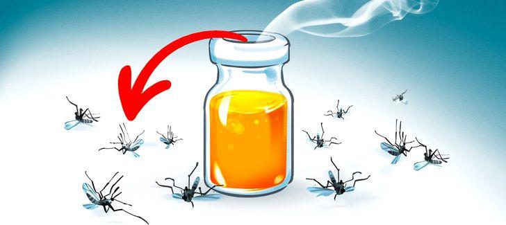 9aromas que afugentam osmosquitos