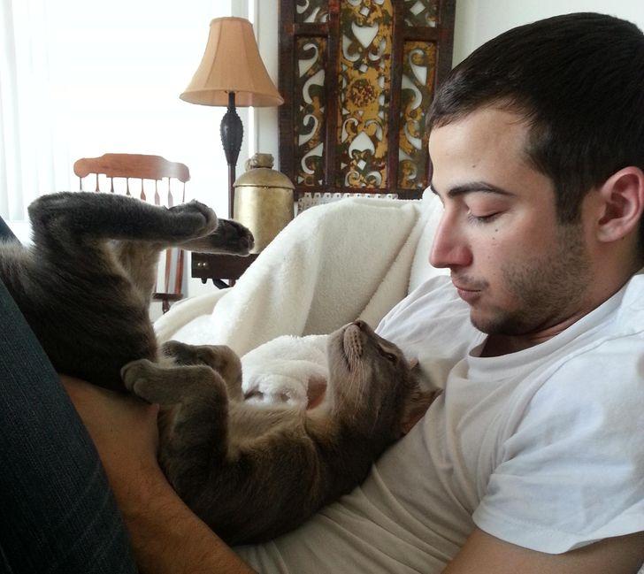 Um estudo explicou por que acariciar cães e gatos reduz o estresse