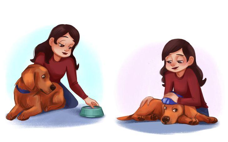 7 Sintomas de que seu cão está com febre (e o que fazer enquanto espera pelo veterinário)