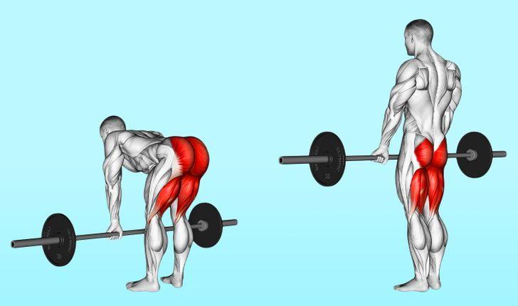 3 Tipos físicos e como ganhar músculos mais rapidamente em cada caso